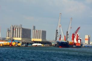 Port Operations Surveys
